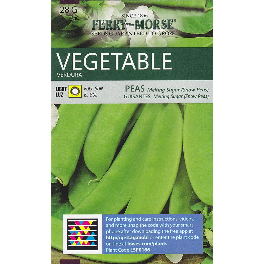 Ferry-Morse Peas Melting Sugar (Snow Peas) Vegetable Seed Packet