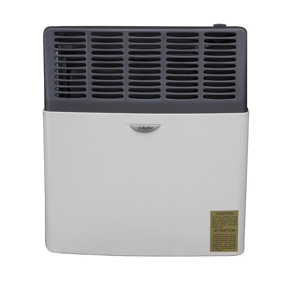 Ashley Hearth Products 8,000-BTU Wall-Mount Liquid Propane Vented Convection Heater