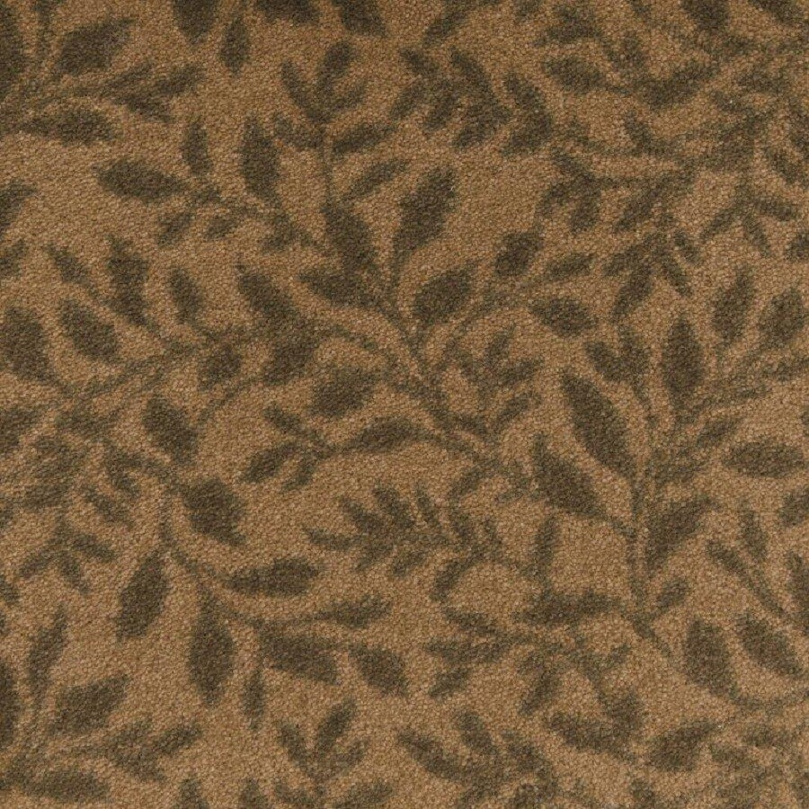 STAINMASTER Glass Cloth Nylon Fashion Forward Carpet Sample