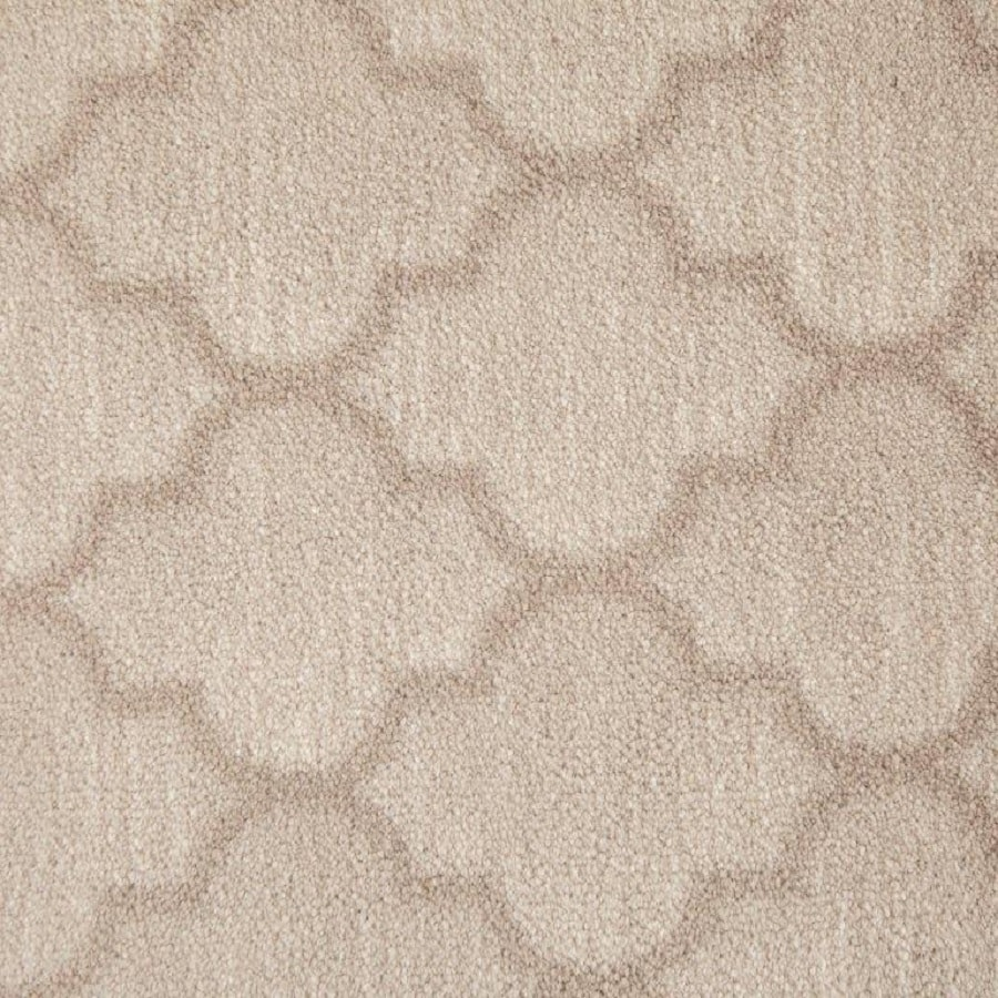STAINMASTER Pearl Nylon Fashion Forward Carpet Sample