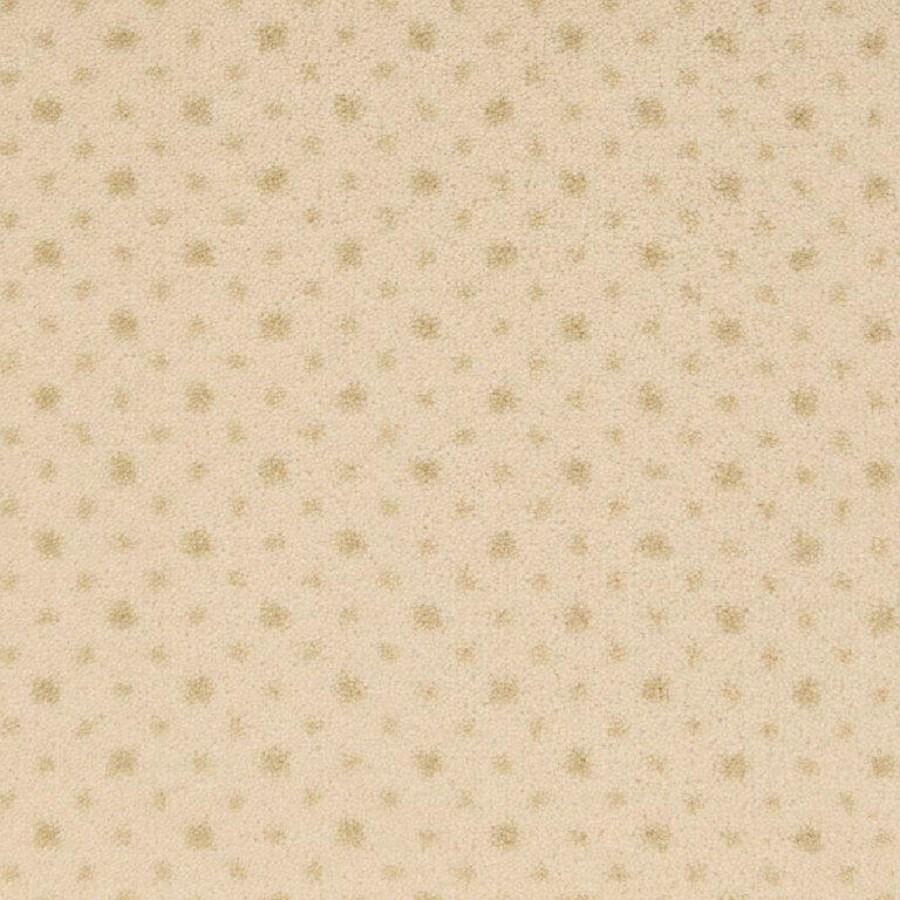 STAINMASTER Warm Ivory Nylon Fashion Forward Carpet Sample