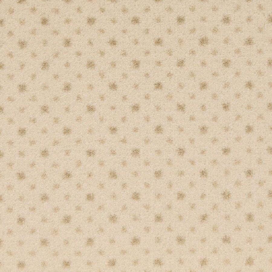 STAINMASTER Pearl Nylon Fashion Forward Carpet Sample