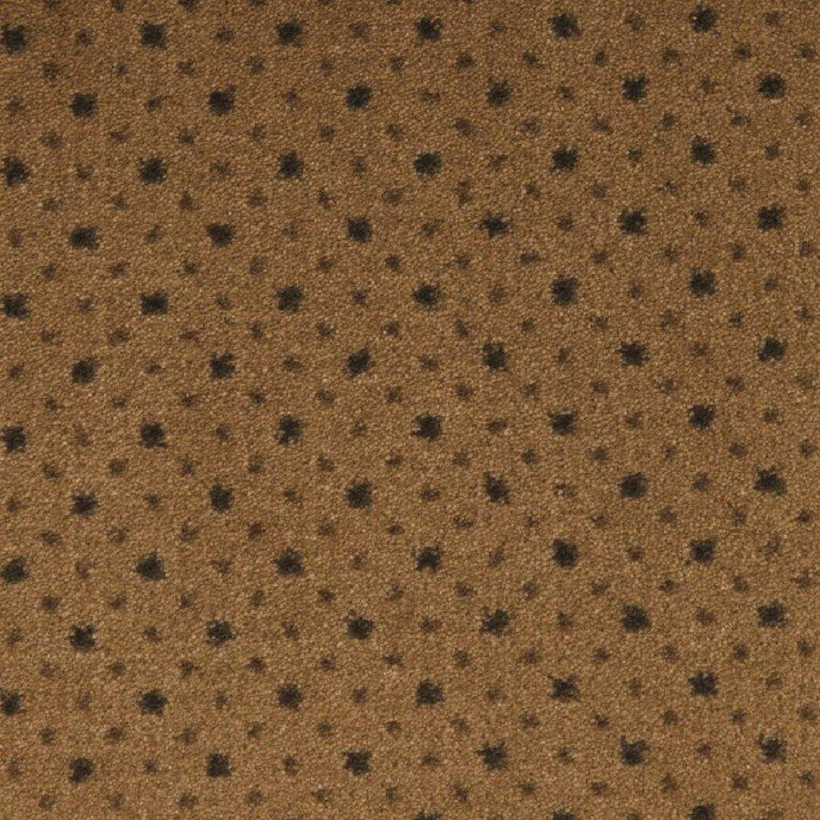 STAINMASTER Tobacco Brown Nylon Fashion Forward Carpet Sample