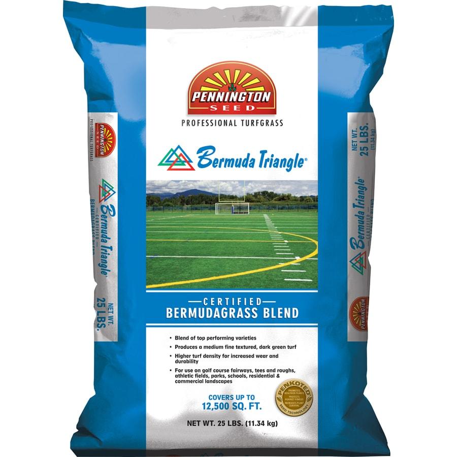 Pennington Bermuda Triangle 25-lb Bermuda Grass Seed