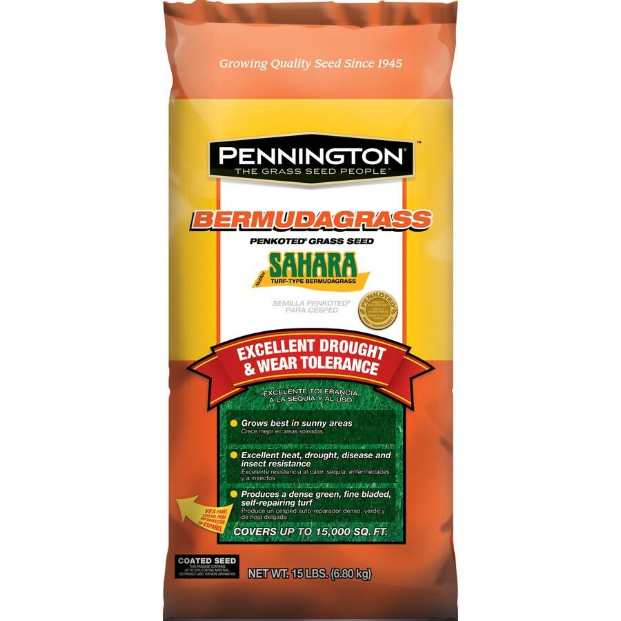 Pennington Sahara 15-lb Bermuda Grass Seed