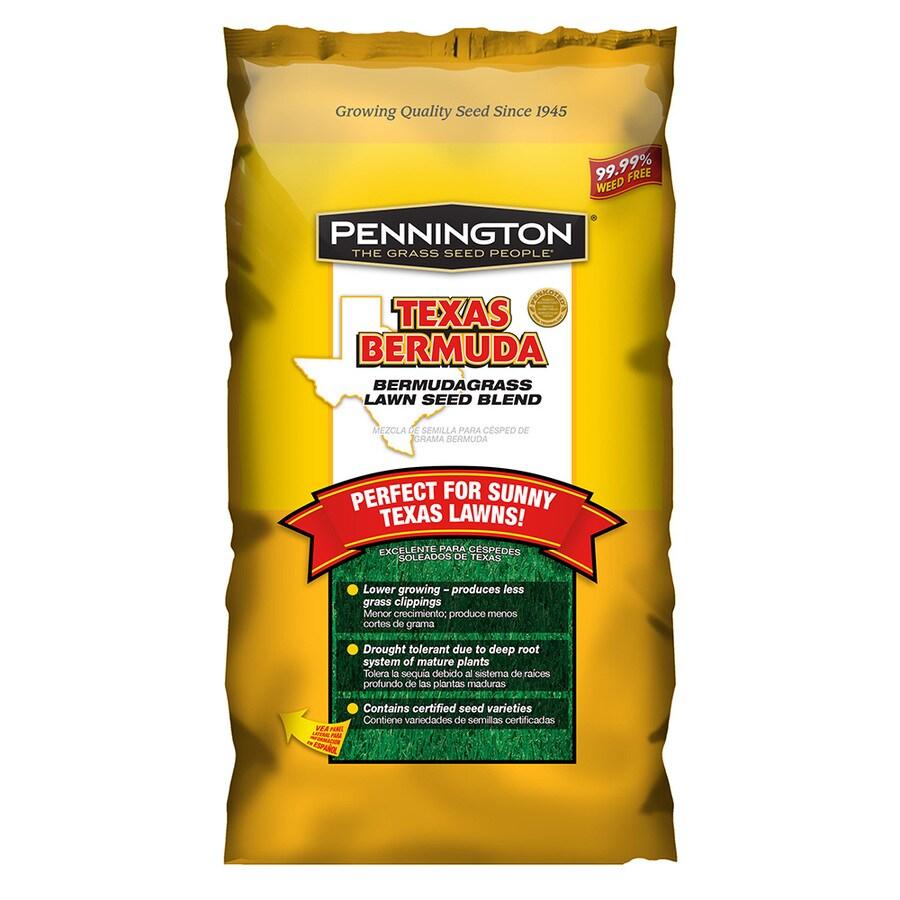 Pennington Texas Bermuda 1-lb Bermuda Grass Seed