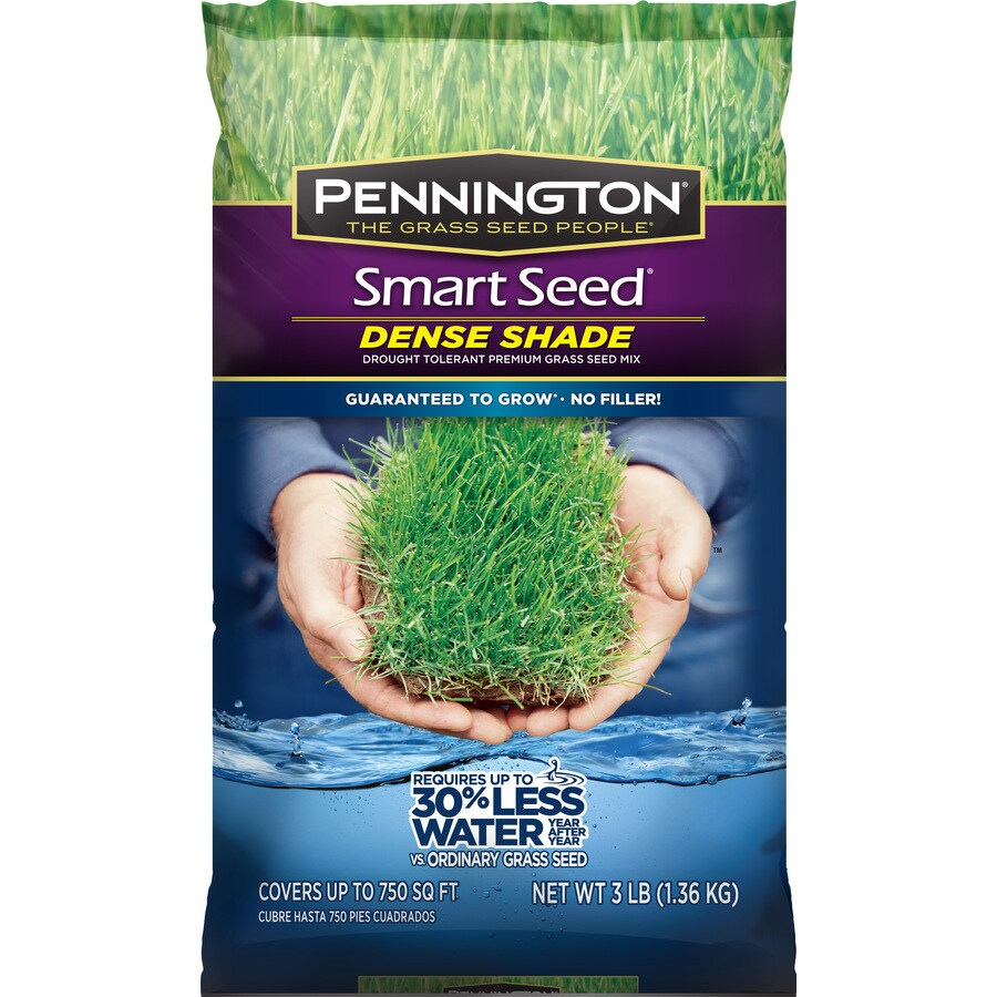 Pennington Smart Seed 3-lb Shade Fescue Grass Seed Mixture