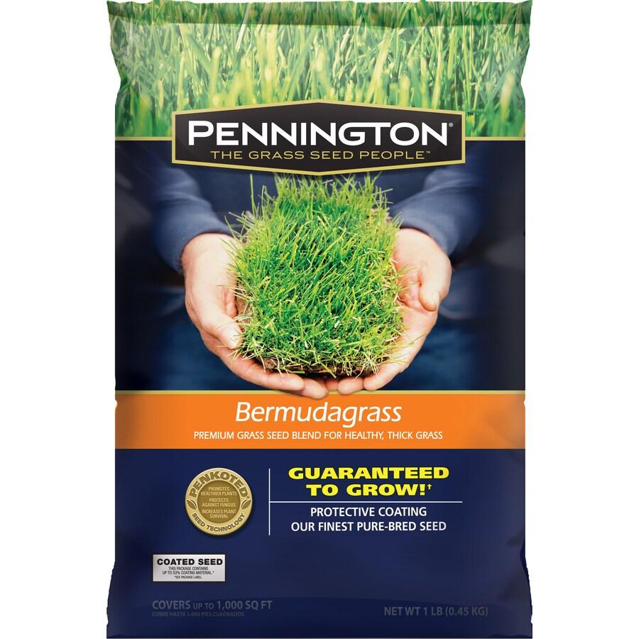 Pennington 1 Lbs. Bermuda Grass Seed