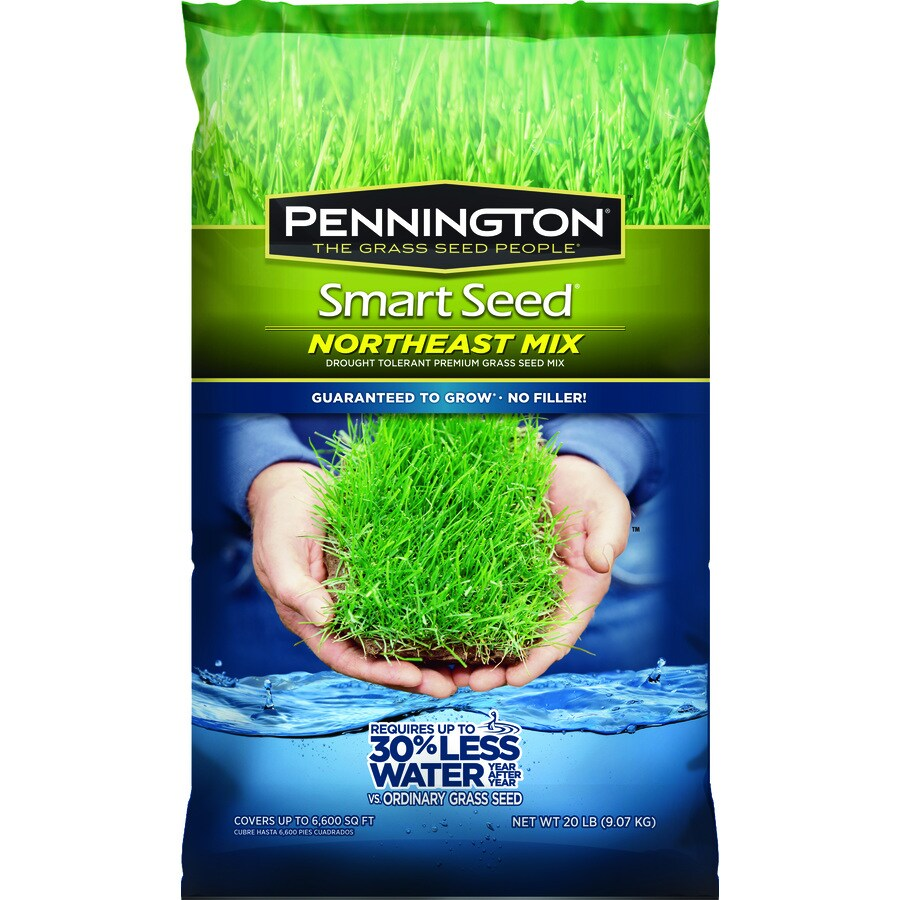 Pennington Smart Seed Northeast Mix 20-lb Sun and Shade Grass Seed
