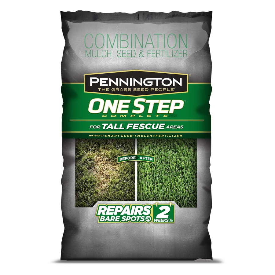 Pennington One Step Complete 8.3-lb Tall Fescue Grass Seed Patching