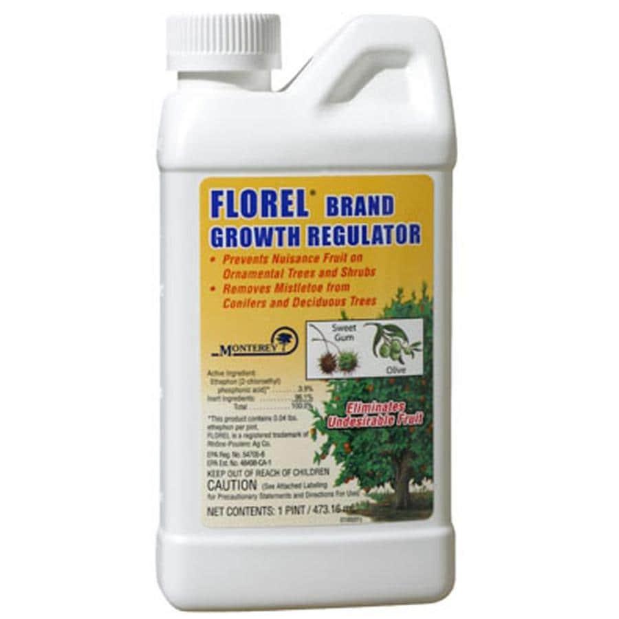 Monterey 16-fl oz Blossom Spray