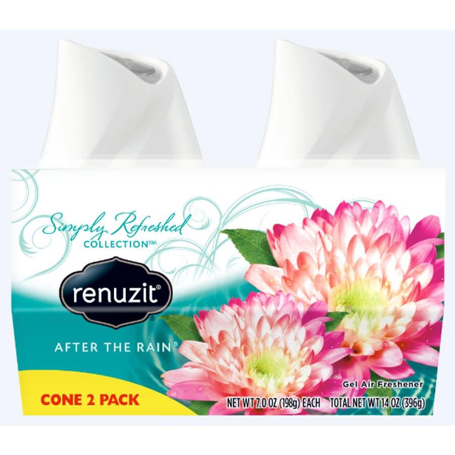 Renuzit AIR 2-Pack 7-oz After the Rain Solid Air Freshener