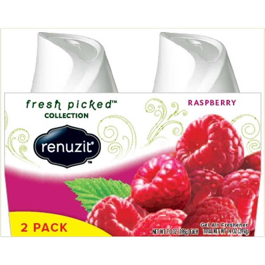 Renuzit AIR 2-Pack 7-oz Raspberry Solid Air Freshener