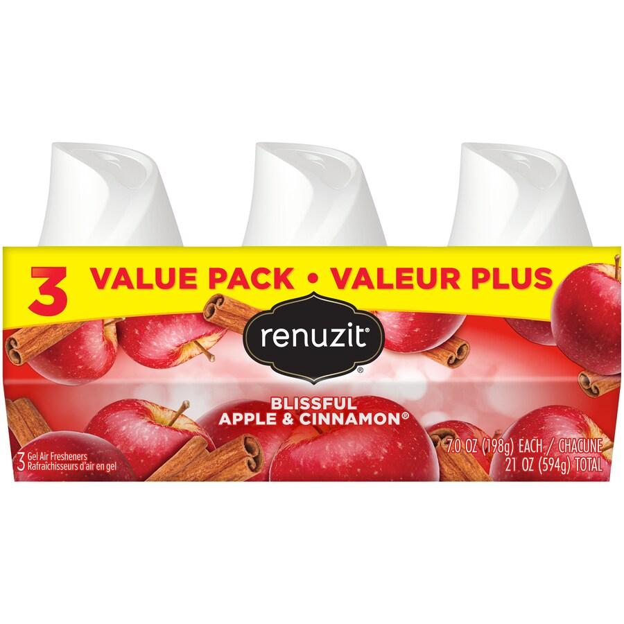 Renuzit 3-Pack Apple Cinnamon Solid Air Freshener