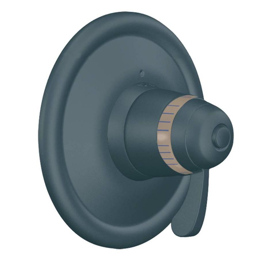 Moen Iron Bathtub/Shower Handle