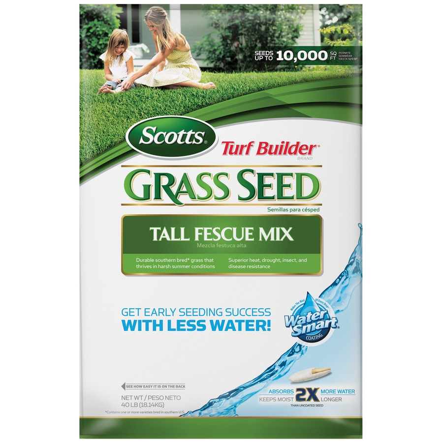 Scotts Turf Builder 40-lb Fescue Grass Seed