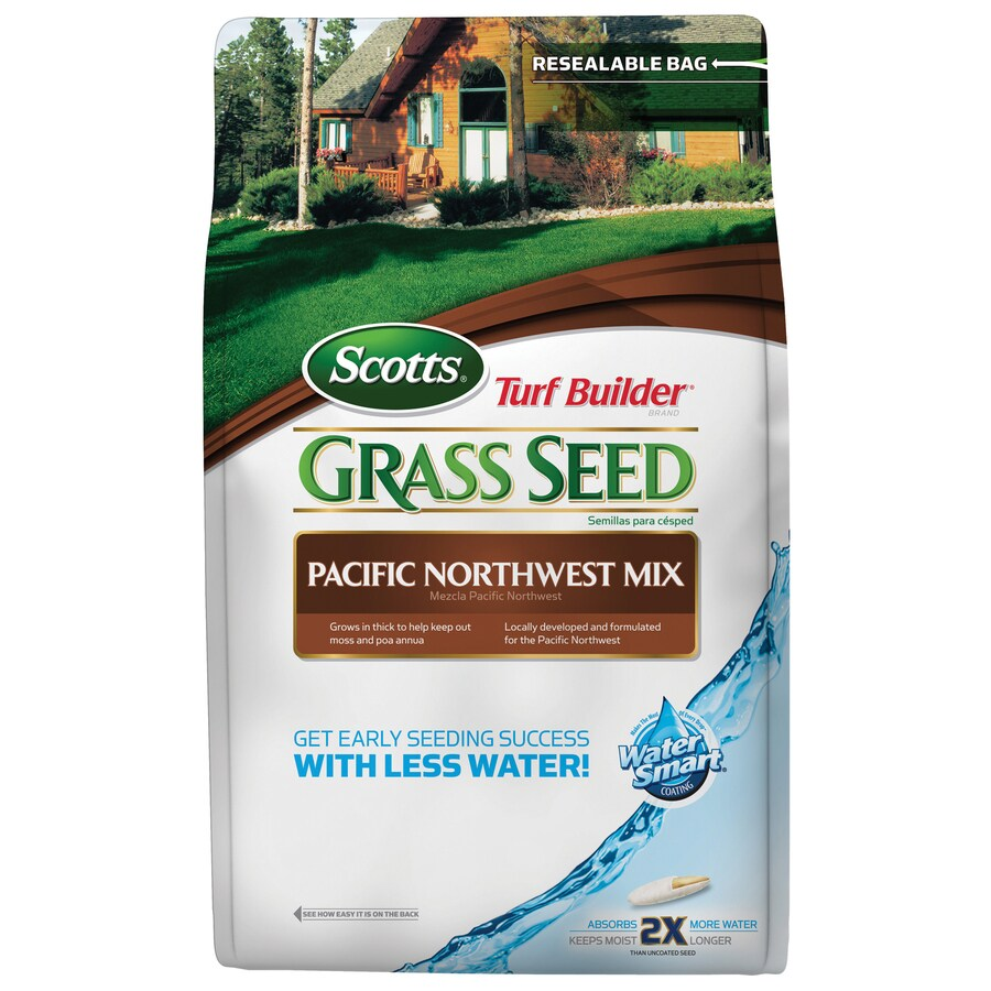 Scotts Turf Builder Pacific Northwest Mix 20-lb Bluegrass Seed