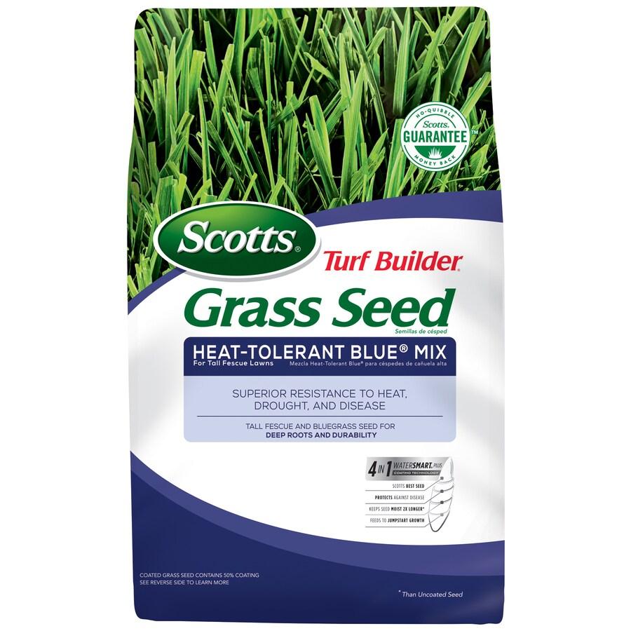 Scotts Turf Builder Heat-Tolerant Blue Mix 20-lb Heat-Tolerant Blue Grass Seed
