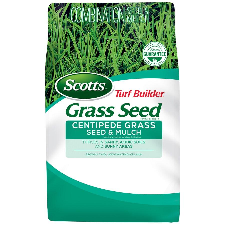 Scotts Turf Builder 5-lb Centipede Grass Seed