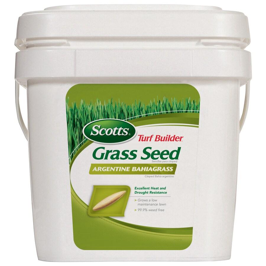Scotts Turf Builder 5-lb Argentine Bahiagrass Grass Seed