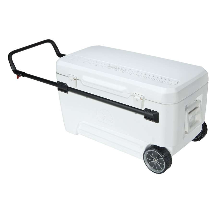 Shop Igloo 110 Quart Wheeled Plastic Chest Cooler At Lowes Com