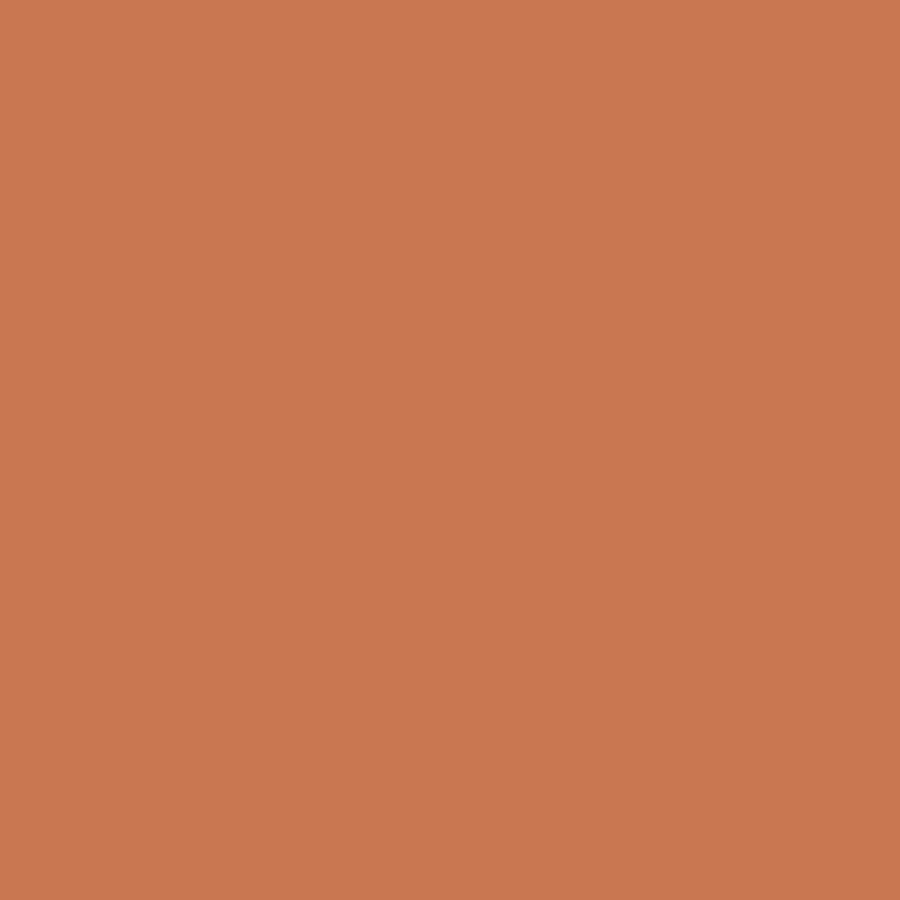 Shop hgtv home by sherwin williams knock out orange Orange paint samples