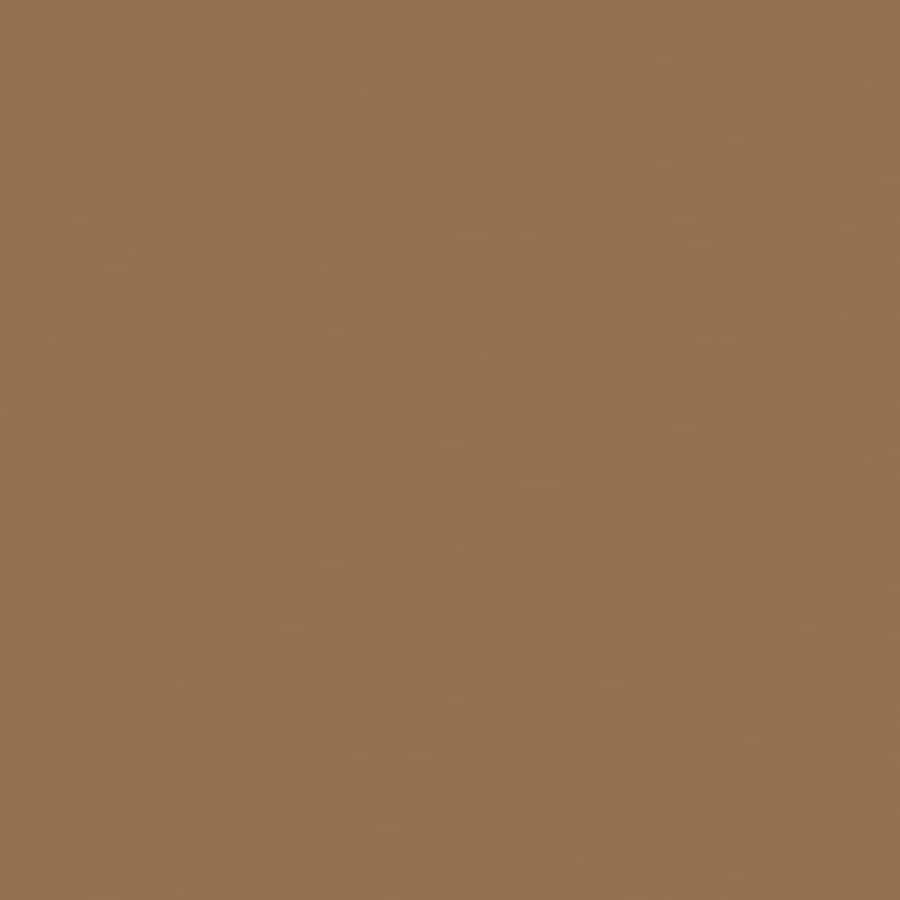 Shop hgtv home by sherwin williams anorak brown interior for Sherwin williams paint sample