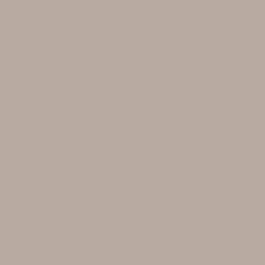 The Three Paint Colors We Decided To Sample: Shop HGTV HOME By Sherwin-Williams Truly Taupe Interior