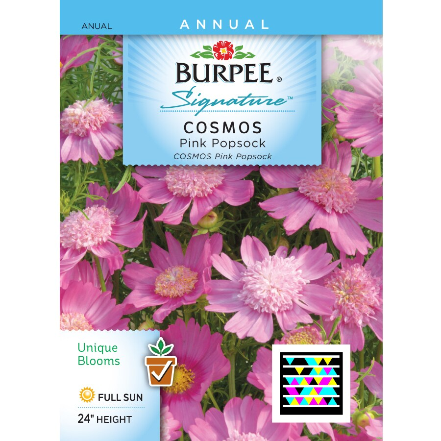 Burpee Cosmos Flower Seed Packet