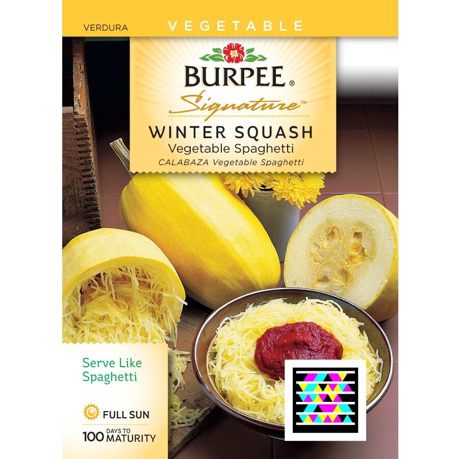 Burpee Squash Vegetable Seed Packet