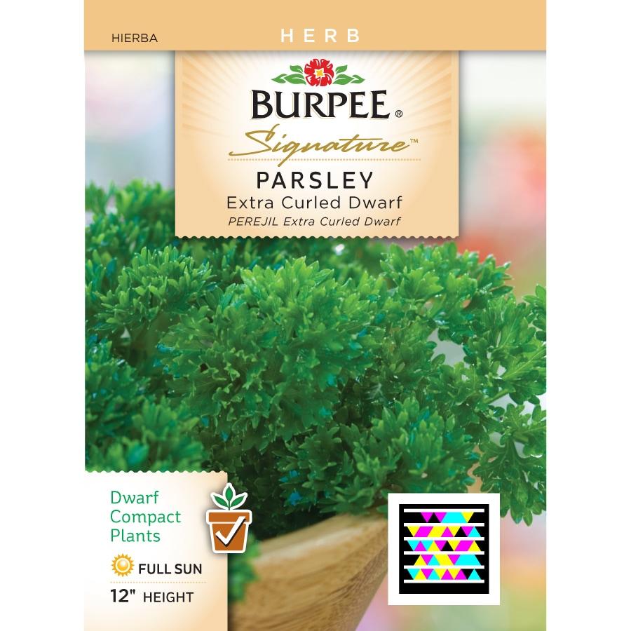 Burpee Parsley Herb Seed Packet