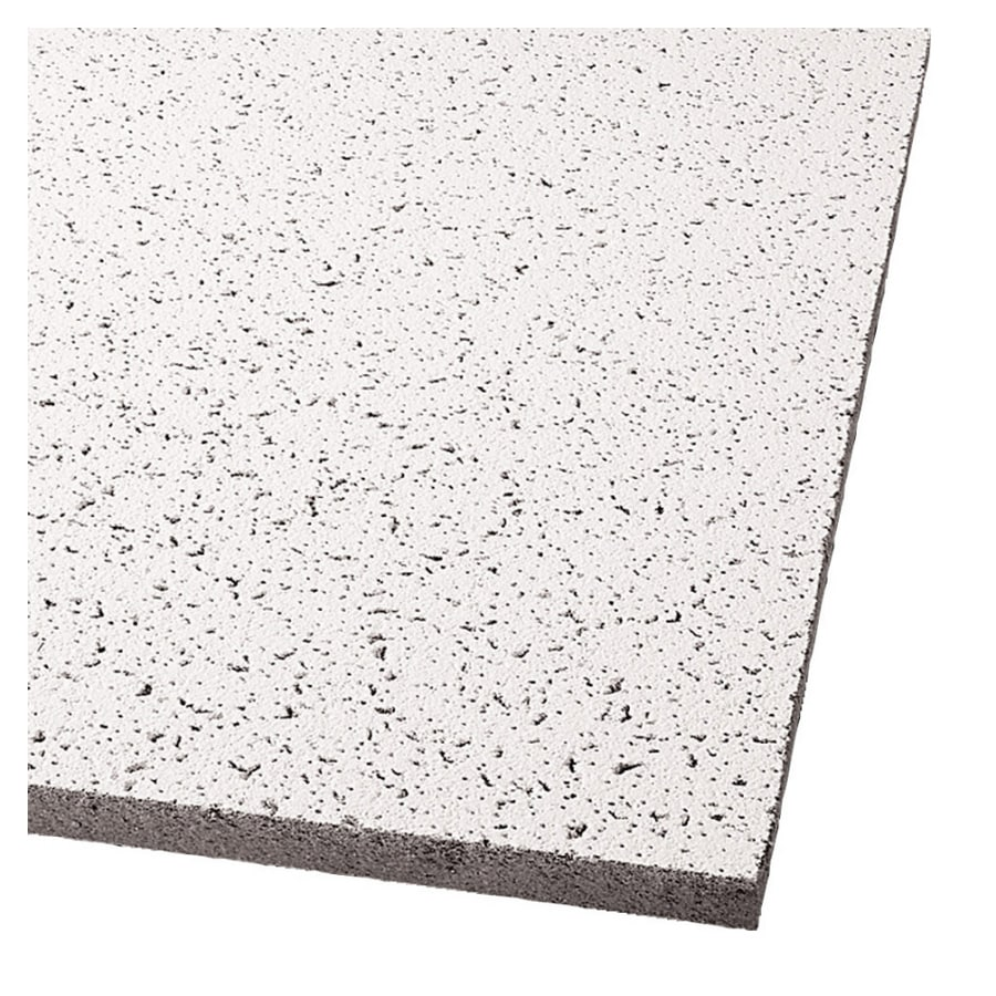 Shop armstrong 24 x 48 white drop in ceiling tiles 12 for 12 x 48 bathroom window