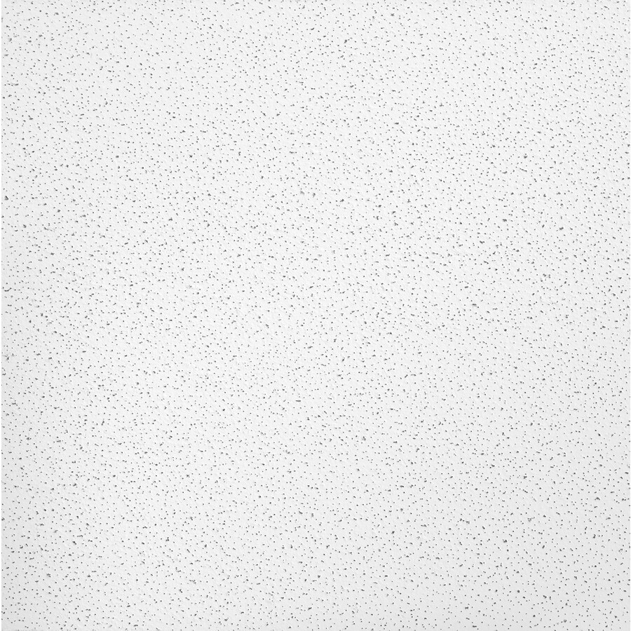 Armstrong Fine Fissured Homestyle 16-Pack White Fissured 15/16-in Drop Acoustic Panel Ceiling Tiles (Common: 24-in x 24-in; Actual: 23.719-in x 23.719-in)