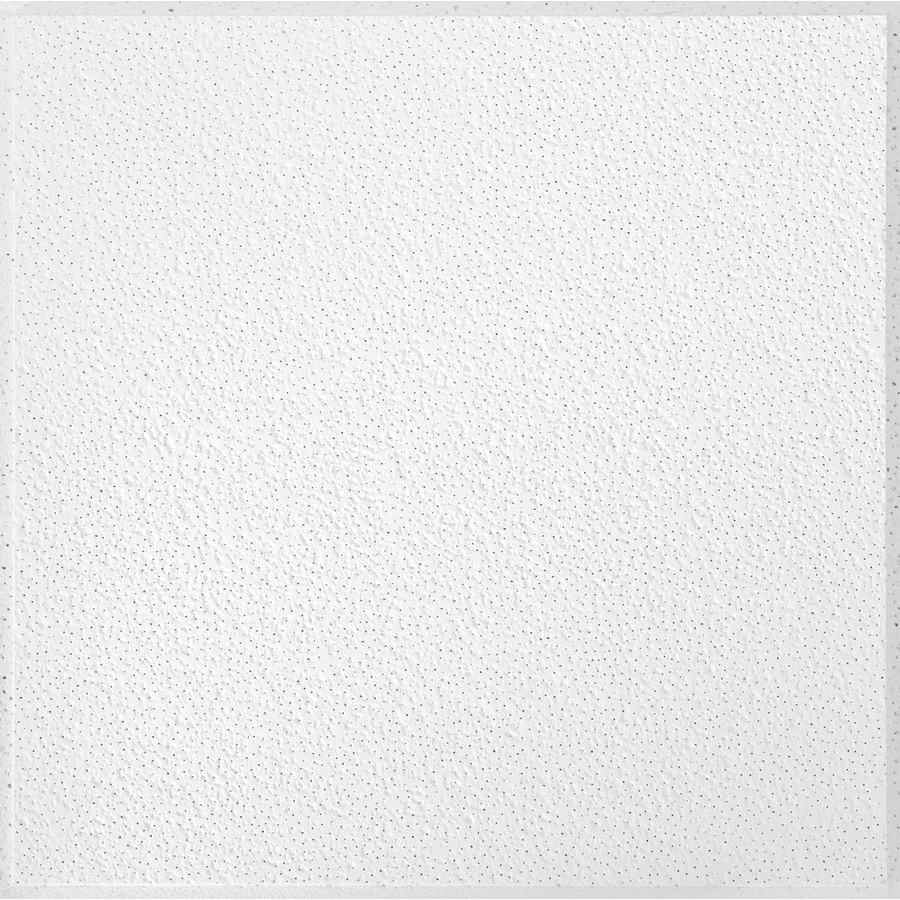 Shop Armstrong Brighton Homestyle 16-Pack White Textured 15/16-in Drop Acoustic Panel Ceiling ...