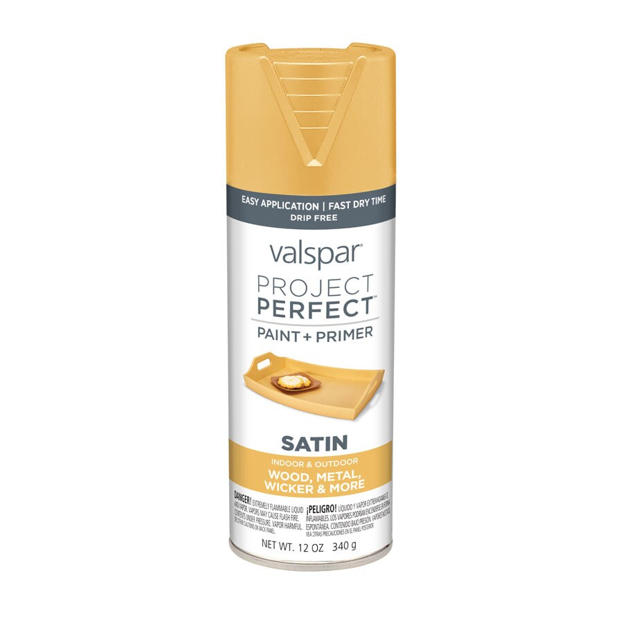 Valspar Project Perfect Afternoon Stroll Fade Resistant Enamel Spray Paint (Actual Net Contents: 12-oz)