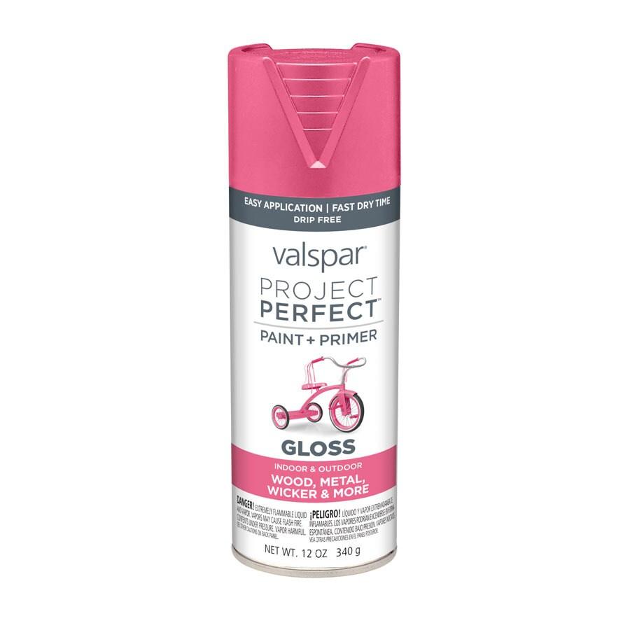 Valspar Project Perfect Frosty Berry Fade Resistant Enamel Spray Paint (Actual Net Contents: 12-oz)