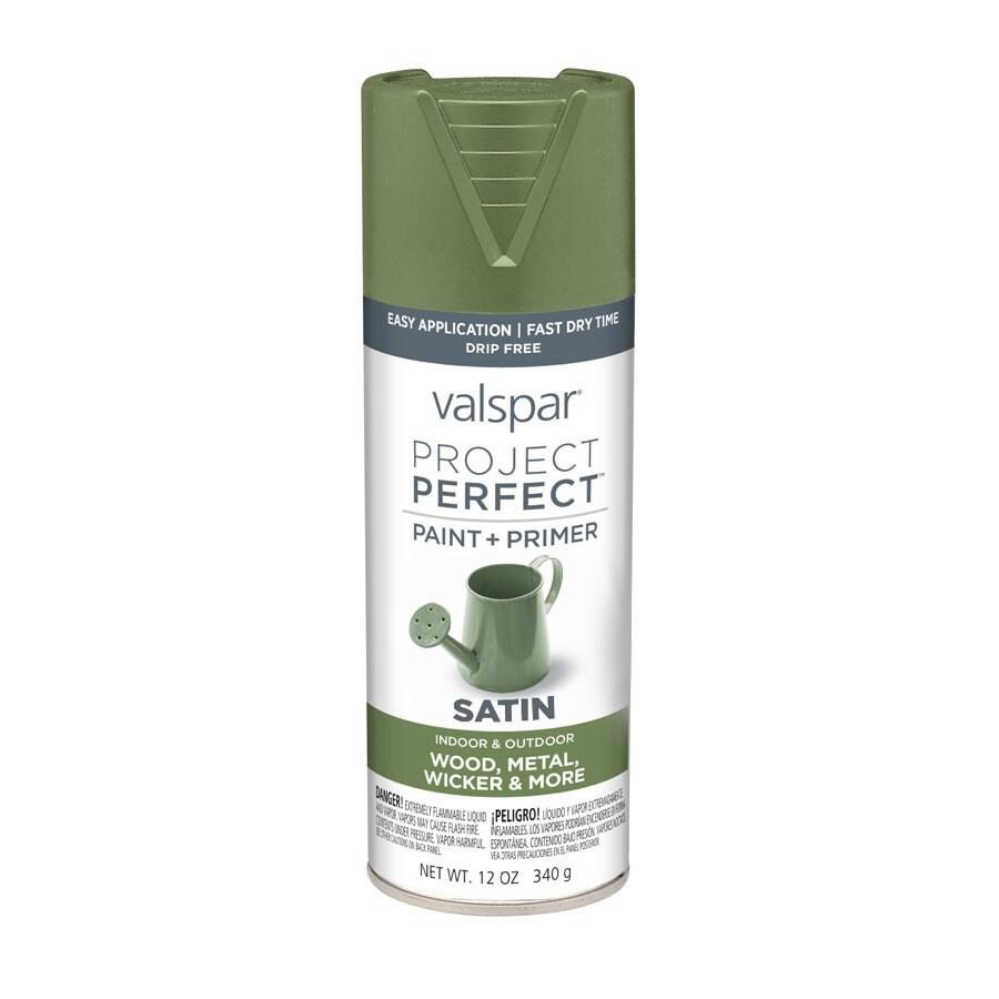 Valspar Project Perfect Leafy Rise Fade Resistant Enamel Spray Paint (Actual Net Contents: 12-oz)