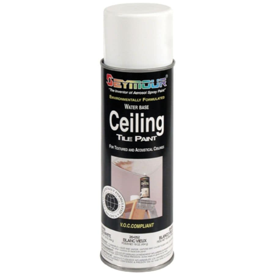SEYMOUR White Indoor/Outdoor Spray Paint
