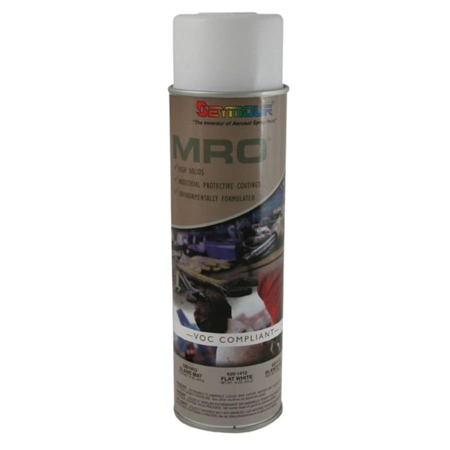 Shop Seymour Flat White Indoor Outdoor Spray Paint At