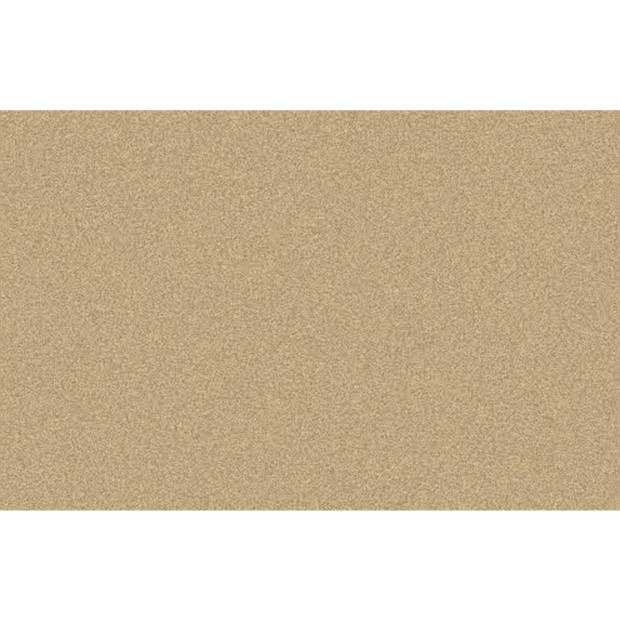 allen + roth Melbourne Shag Rectangular Cream Transitional Tufted Area Rug (Common: 9-ft x 12-ft; Actual: 10-ft x 10-ft)