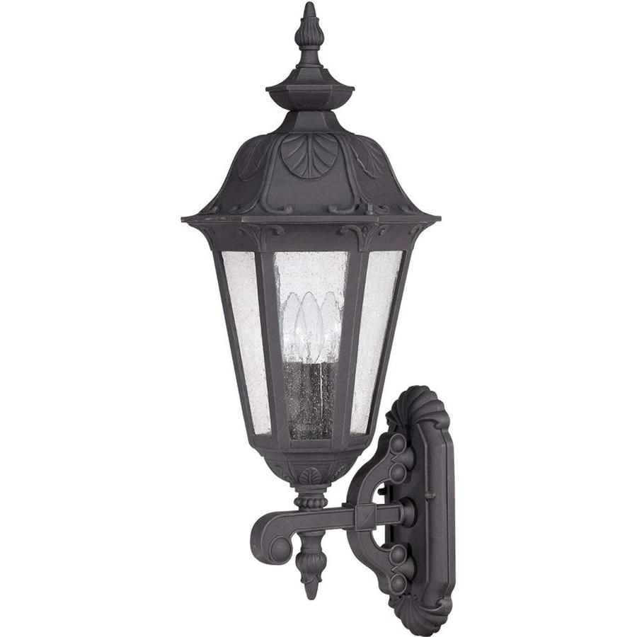 22.42-in H Satin Iron Ore Outdoor Wall Light