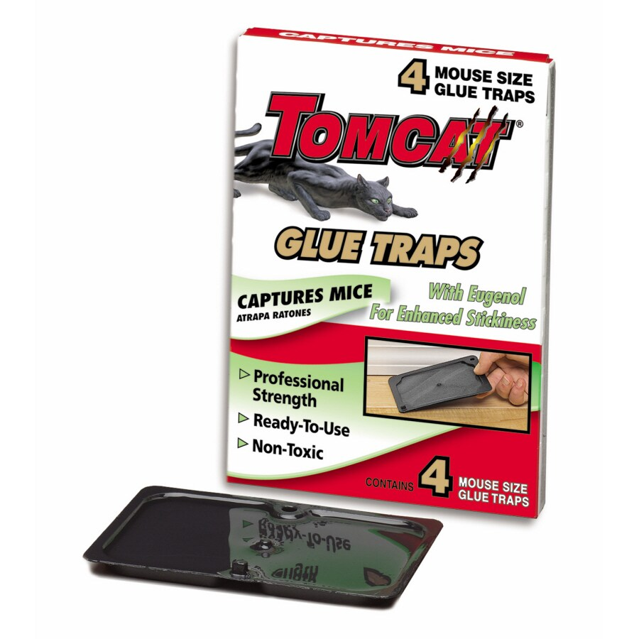 TOMCAT 4-Pack Mouse Glue Trap with Eugenol