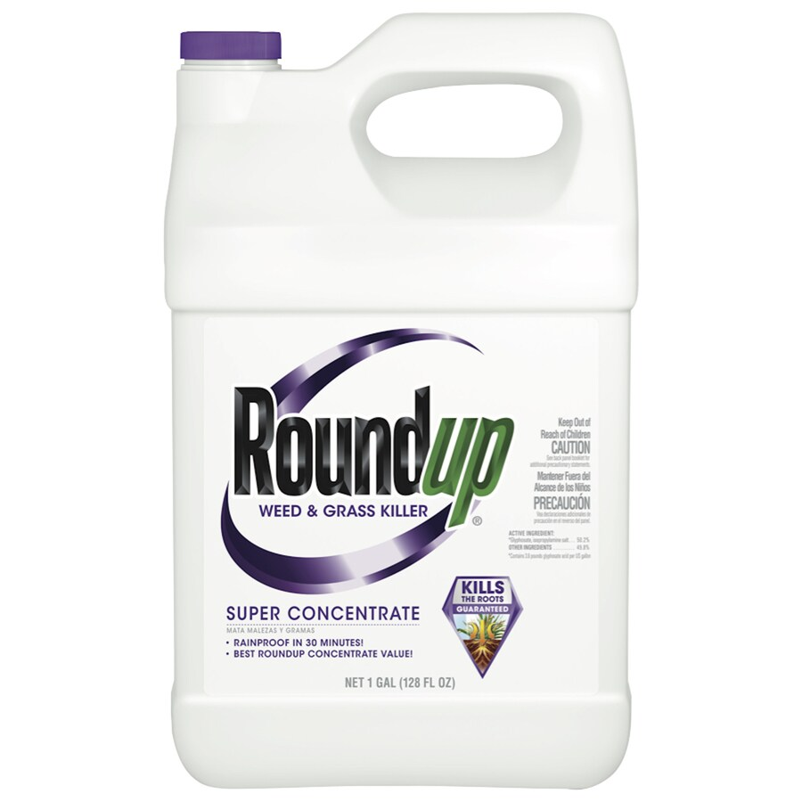 Roundup Super Concentrate 128-oz Weed and Grass Killer