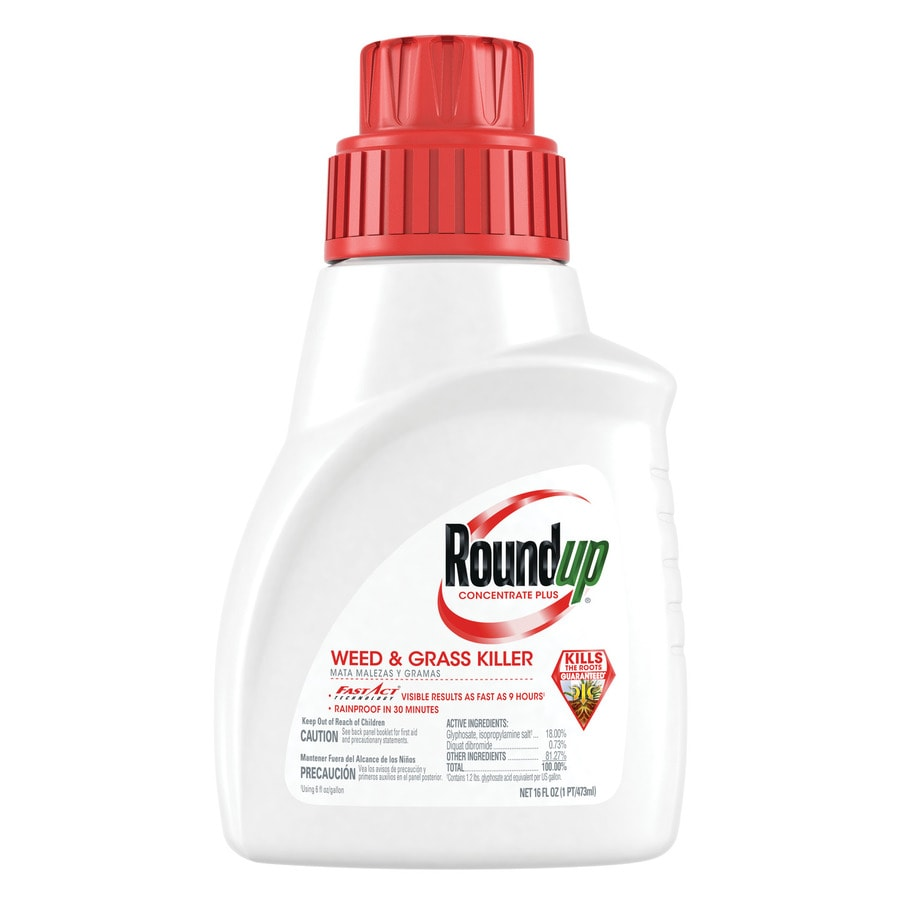 Roundup 16-oz Weed and Grass Killer Plus Pint