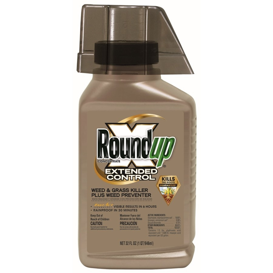 Roundup Extended Control 32-oz Weed and Grass Killer Concentrate