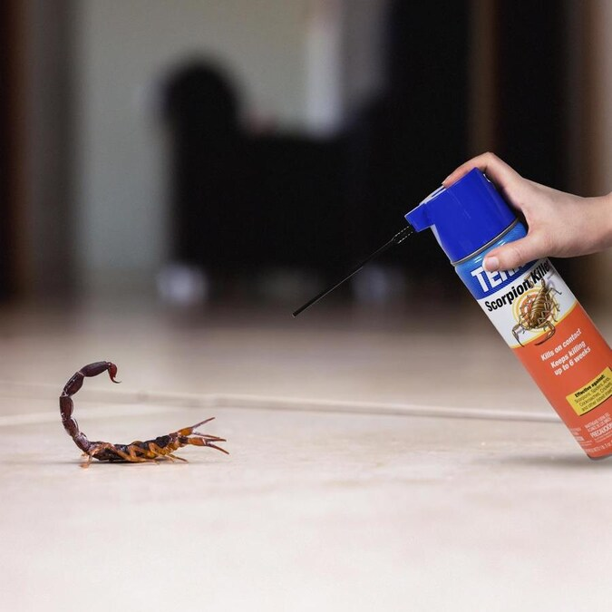 Terro 19 Oz Scorpion Killer In The Pesticides Department At Lowes Com