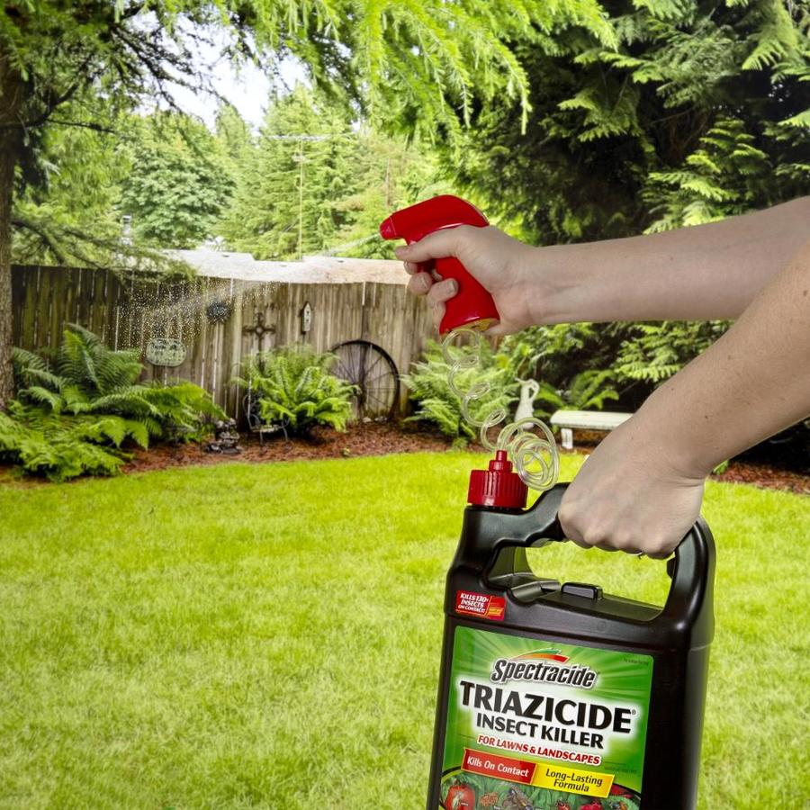 071121105257 09662035 - Is Spectracide Safe For Vegetable Gardens