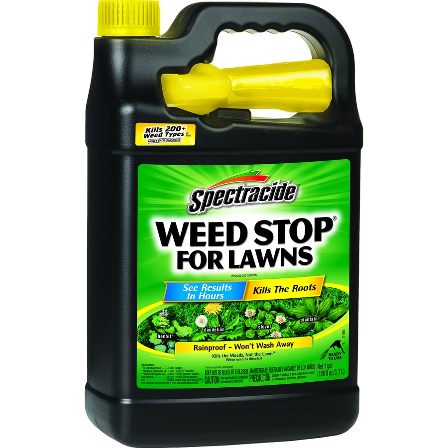 Spectracide Gallon Ready-to-Use Weed Stop for Lawns