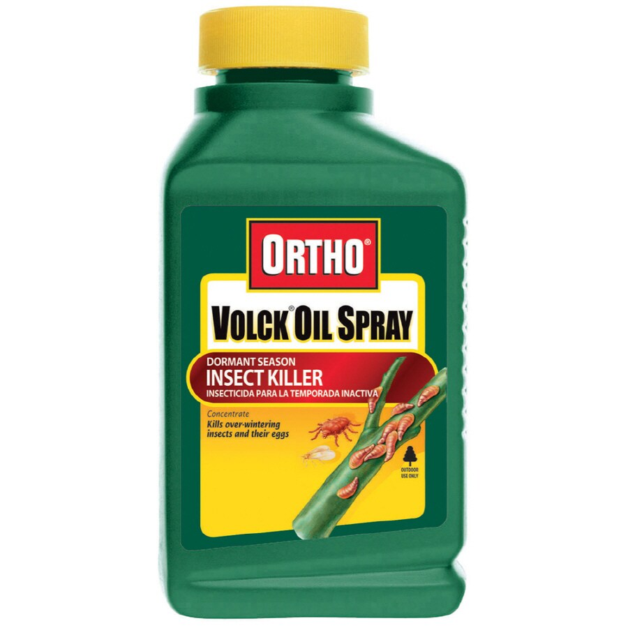 ORTHO Volck Oil Spray for Dormant Season Insect Killer Concentrate
