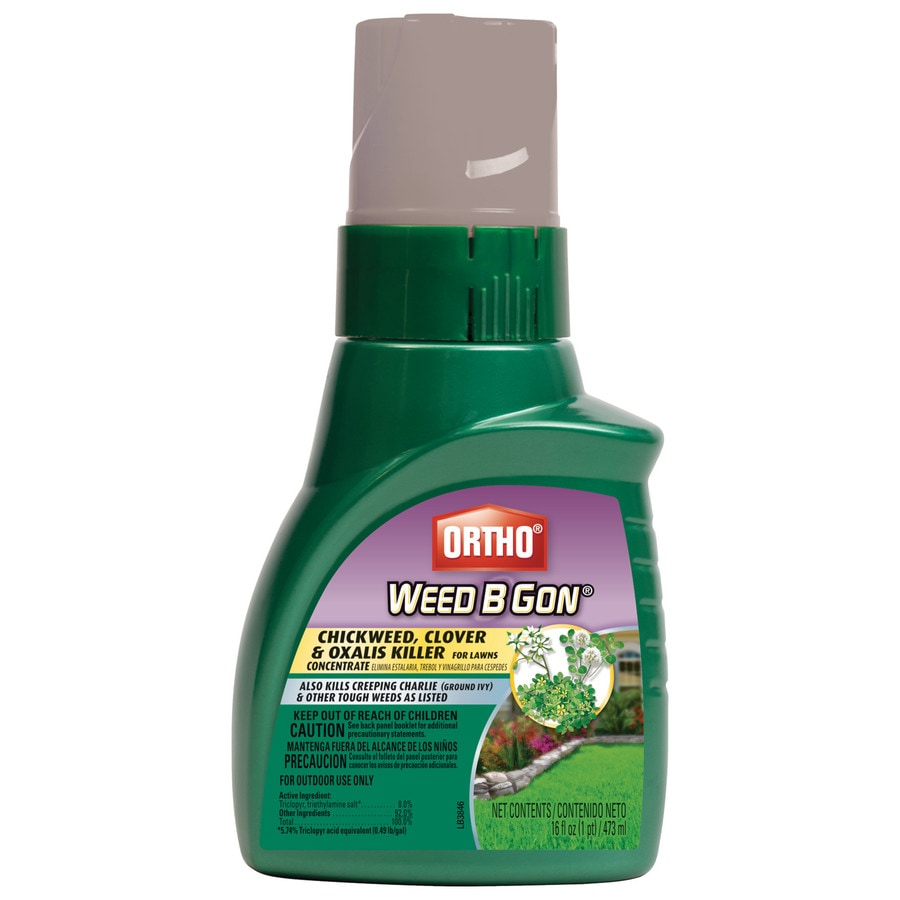 ORTHO 16-fl oz Weed B Gon Chickweed, Clover and Oxalis Killer for Lawns Concentrate